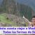 ¿Cuánto cuesta viajar a Machu Picchu? Todas las formas de llegar