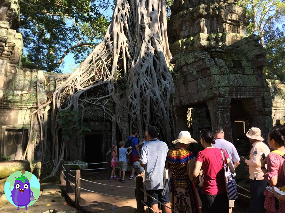 como-llegar-visitar-angkor-wat-siem-riep-